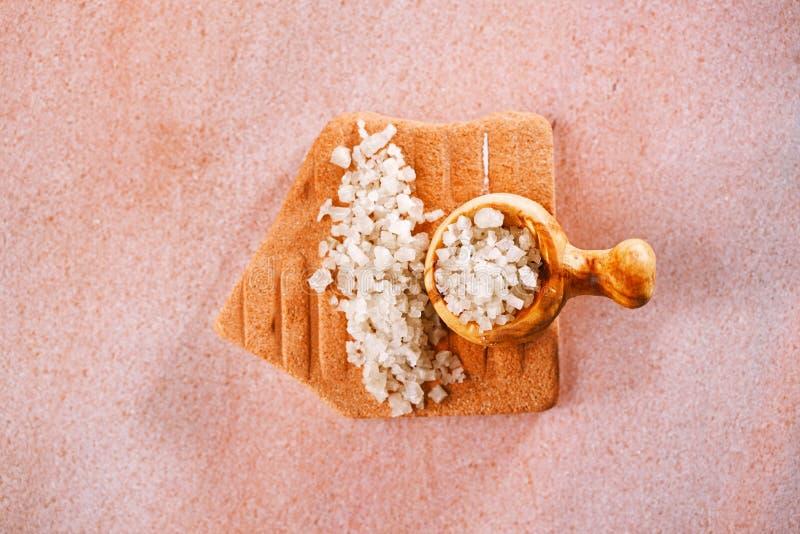 Французское серое соль моря с деревянной ложкой стоковое фото