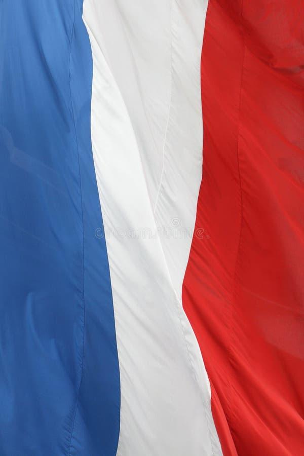 франчуз флага стоковое изображение