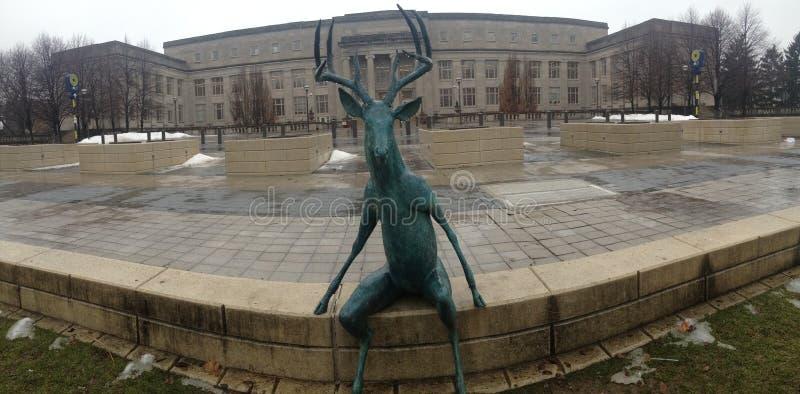 Фронт Колумбуса Огайо статуи рогача панорамный стоковая фотография rf