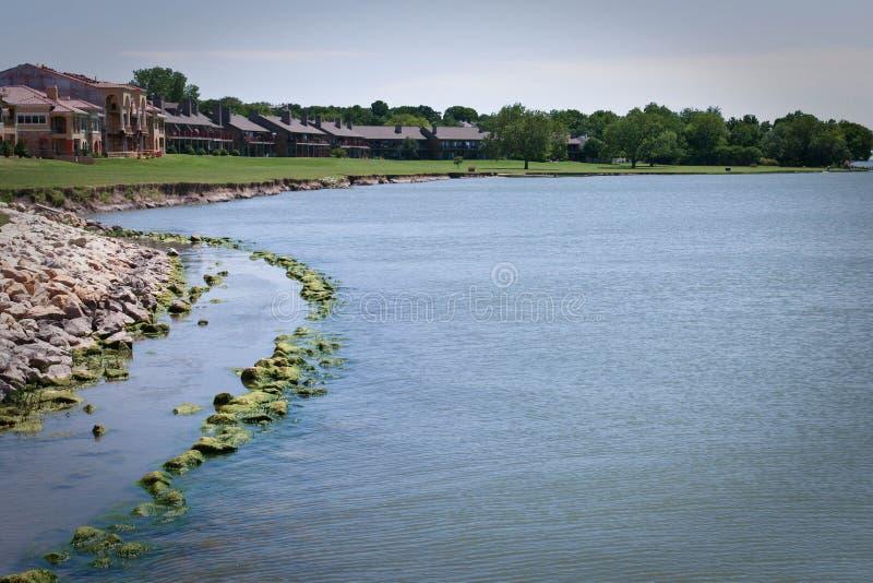 Фронт озера с кондо и квартирами стоковые фотографии rf