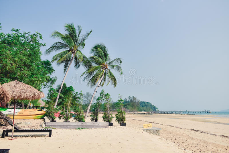 Фронт пляжа, вид на океан стоковые фото