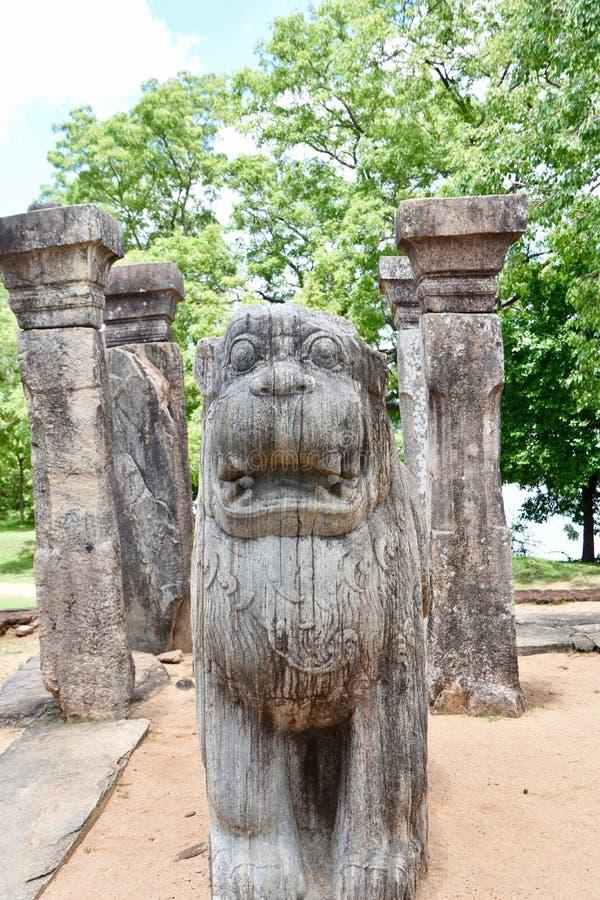 Фронт статуи льва на Polonnaruwa стоковая фотография