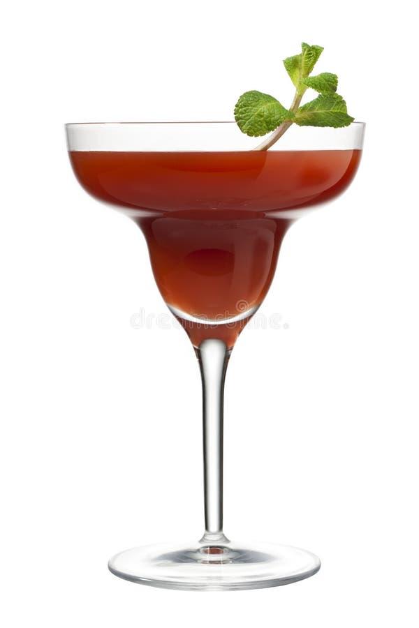 Фруктовый сок в стекле martini. стоковое фото rf