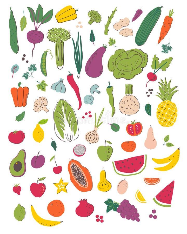 Фрукты и овощи вручают набор иллюстрации притяжки иллюстрация вектора