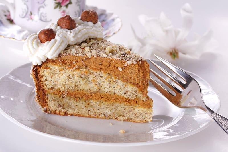 фундук торта стоковые фото