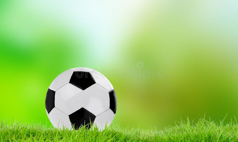 Футбол игр команды на траве иллюстрация штока