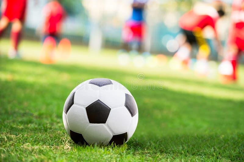 Футбольный мяч в суде стоковые изображения rf