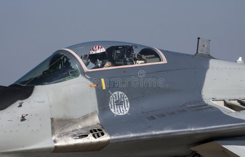 Фулкрум Mikoyan MiG-29 стоковое изображение rf