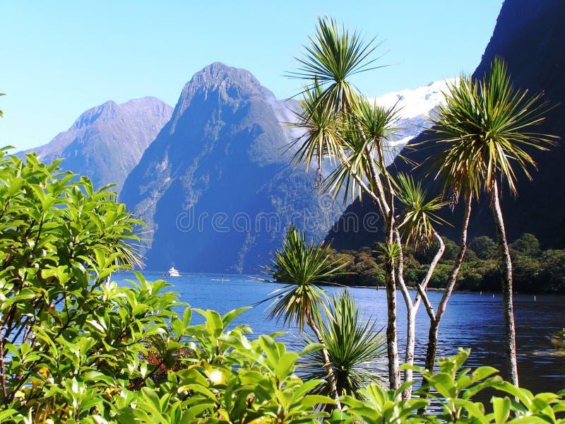 фьорды Новая Зеландия стоковая фотография