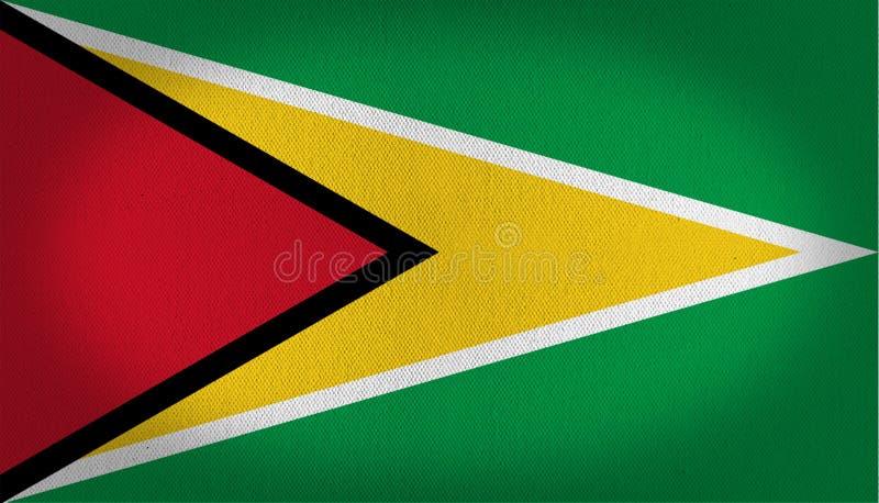 Флаг Гайаны иллюстрация вектора