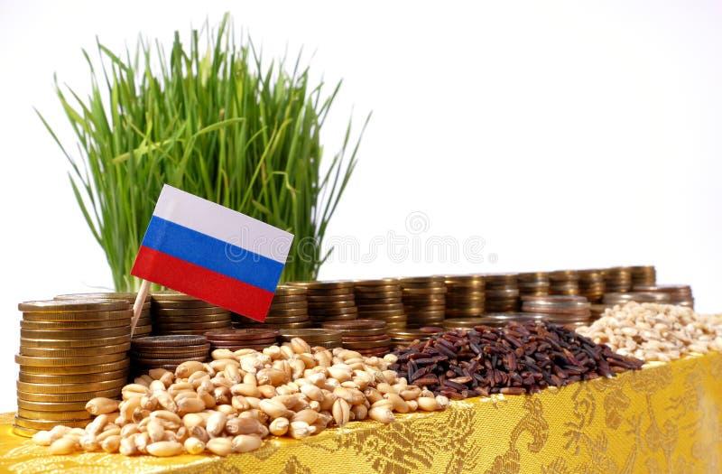 Флаг России развевая с стогом монеток денег и кучами пшеницы стоковая фотография rf