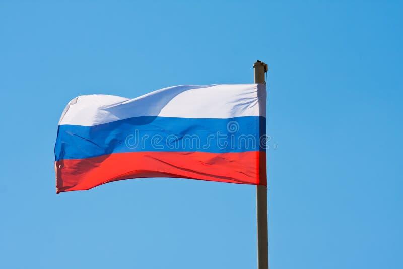 Флаг России стоковые изображения