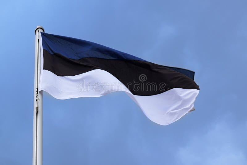Флаг Эстонии с нашивками в голубом, черном, белом, национальном символе стоковая фотография