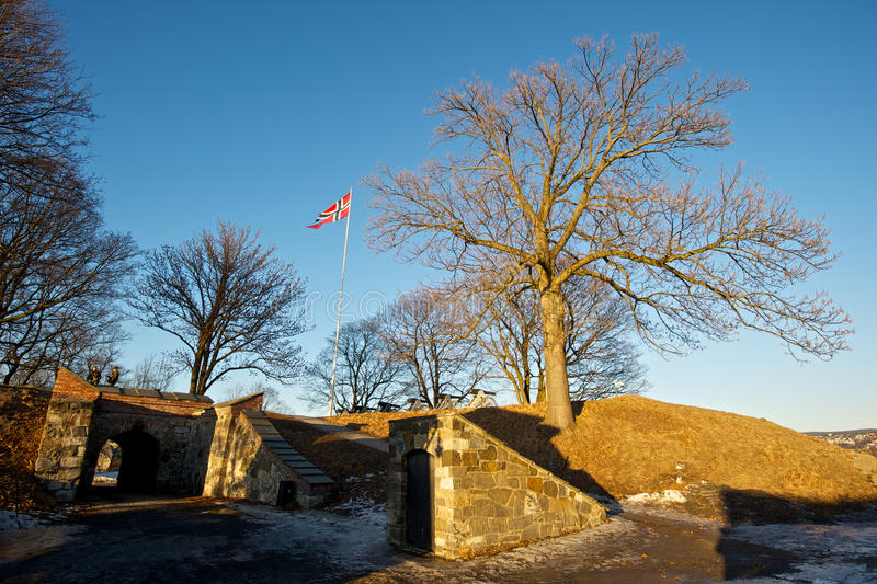 Флаг Norweigian на крепости Akershus стоковая фотография rf