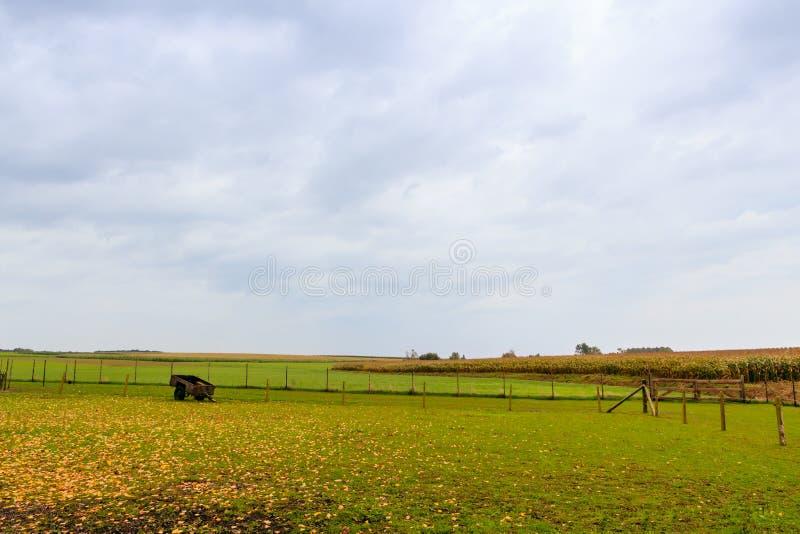 Фламандская предпосылка сельской местности стоковая фотография