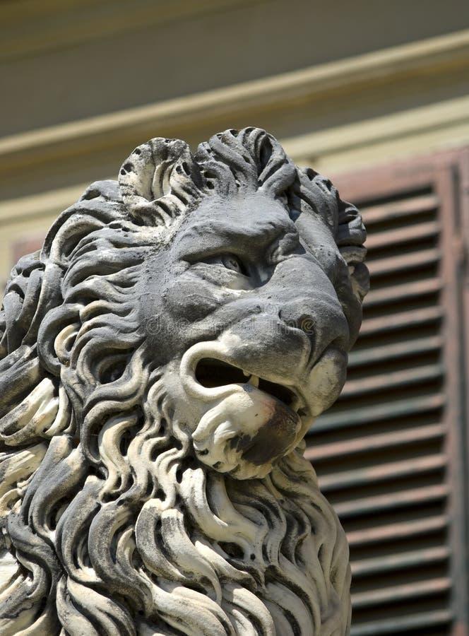 Флорентийский лев стоковое фото rf