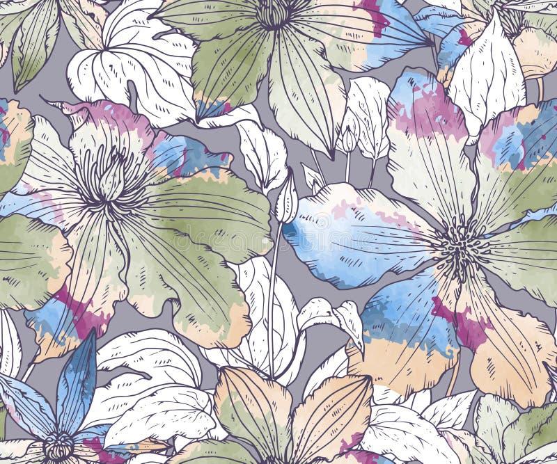 Флористическая безшовная картина дальше с clematis нарисованным рукой цветет иллюстрация вектора