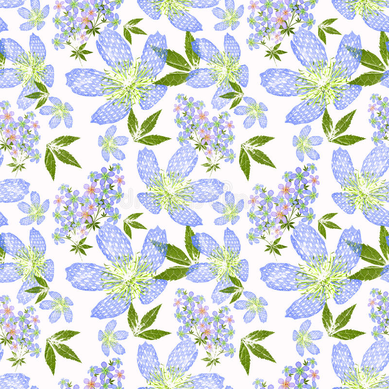 Флористическая безшовная картина, милая синь, пурпур, цветет белая предпосылка иллюстрация штока