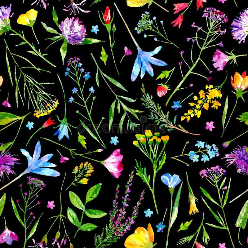 Флористическая безшовная картина полевые цветки и травы на черной предпосылке бесплатная иллюстрация