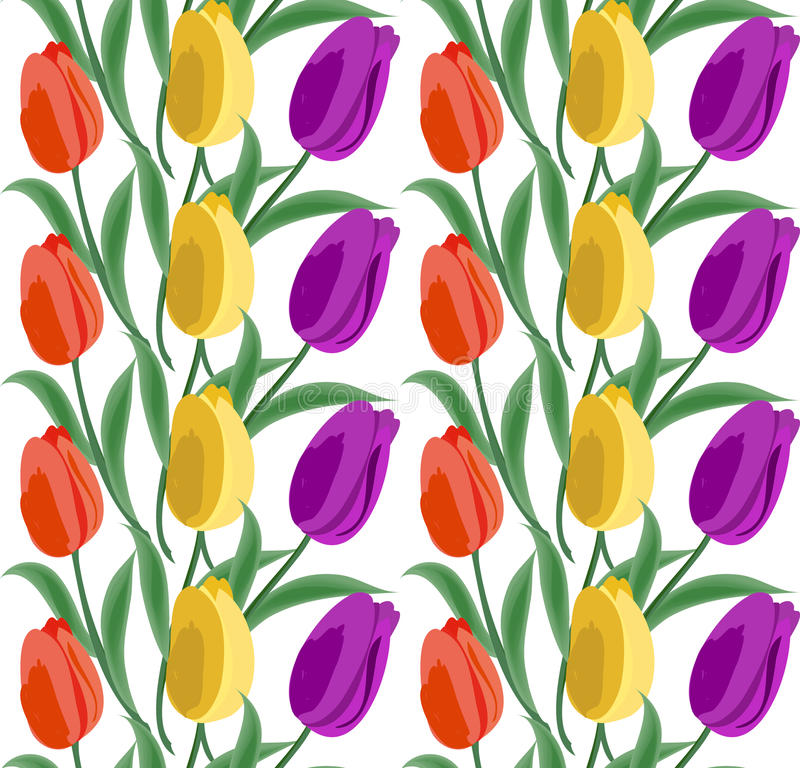 Флористическая безшовная картина предпосылки с тюльпанами Весна цветет нарисованная рука иллюстрации вектора цветения иллюстрация вектора