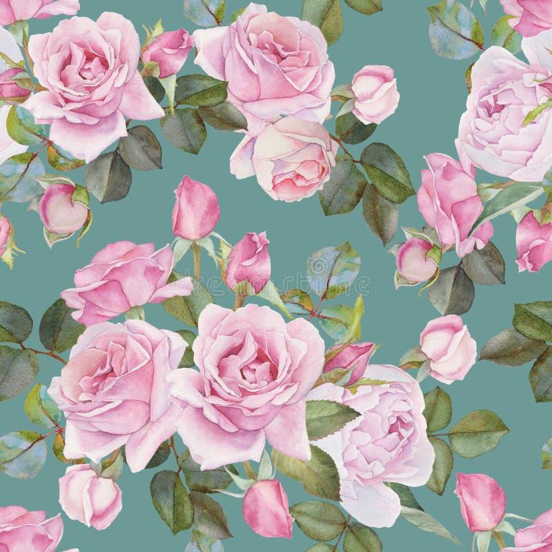 Флористическая безшовная картина с розами пинка акварели иллюстрация вектора