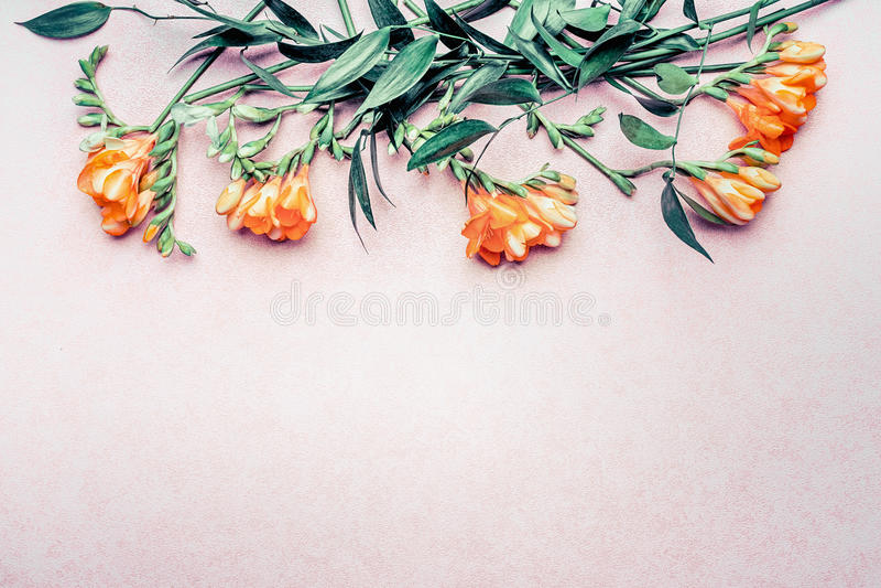 Флористическая граница сделанная из тропических цветков и листьев на предпосылке пастельного пинка, взгляд сверху стоковые фотографии rf