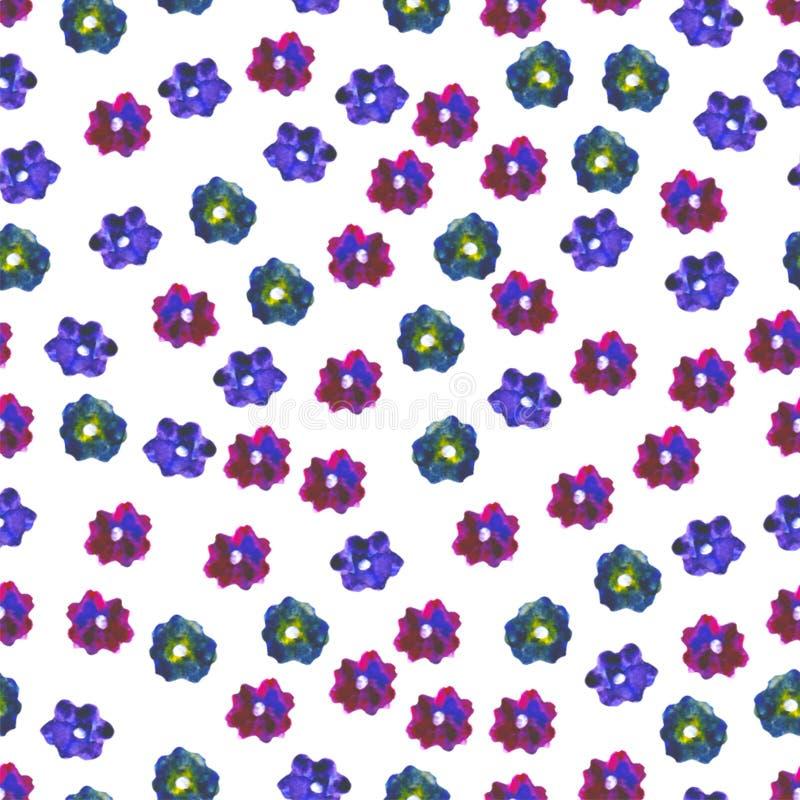 флористическая картина безшовная Покрашенная рукой слива маргаритки Яркая иллюстрация акварели Красочные цветки на белой предпосы иллюстрация вектора
