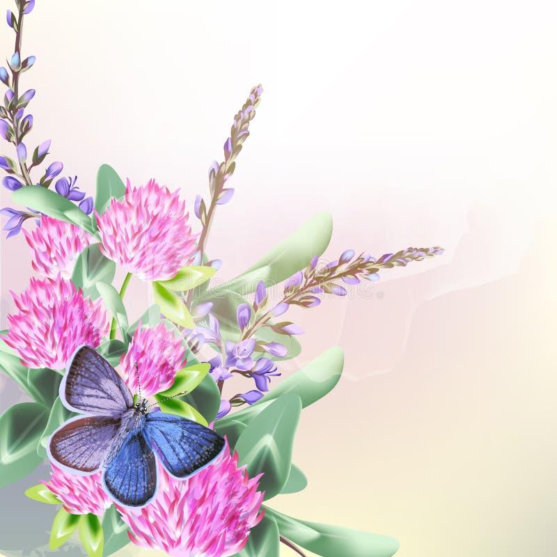 Флористическая предпосылка с полем цветет клевер и бабочка иллюстрация вектора