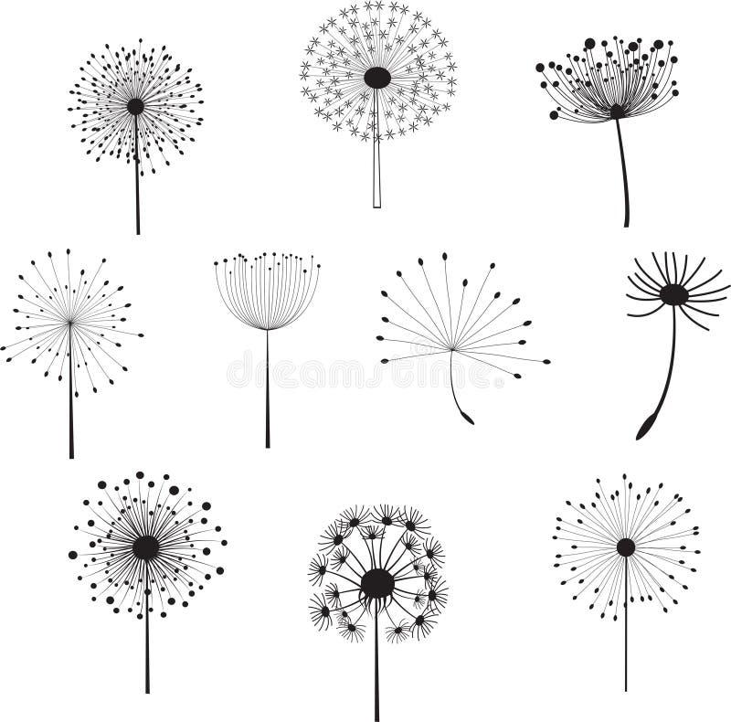 Флористические элементы с одуванчиками для дизайна бесплатная иллюстрация