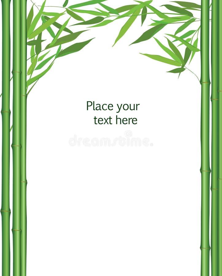 Флористический бамбук выходит рамка изолированный Китайское оформление вектора природы иллюстрация штока