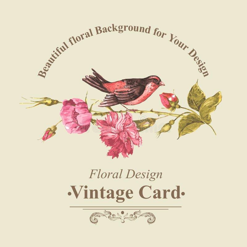 Флористический букет с розами и птицей, винтажной карточкой иллюстрация вектора