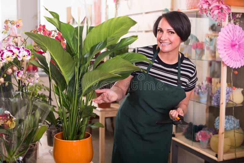 Флорист держа садовнические инструменты стоковые изображения