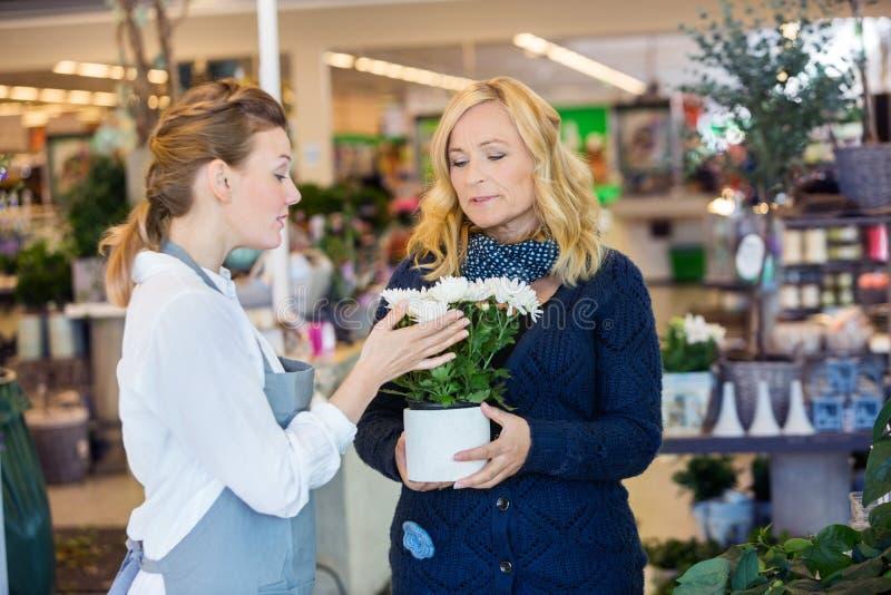 Флорист помогая женскому клиенту в покупая цветке стоковая фотография rf