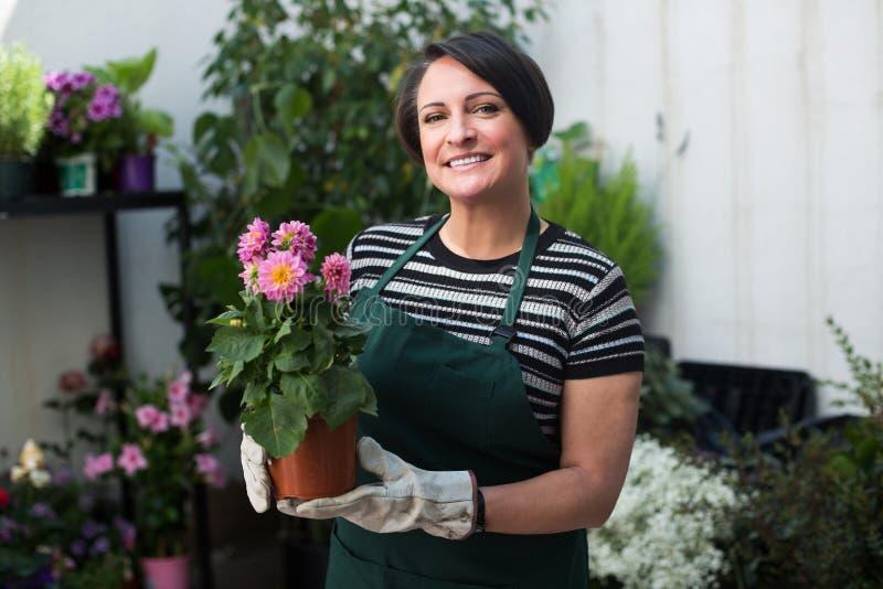 Флорист работая в флористическом магазине стоковая фотография