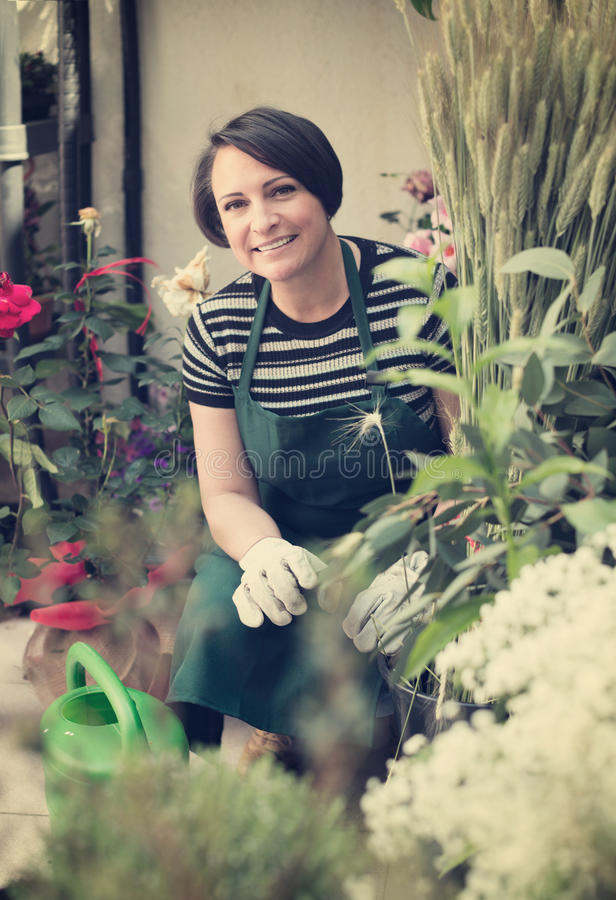 Флорист счастливо работая в флористическом магазине стоковая фотография