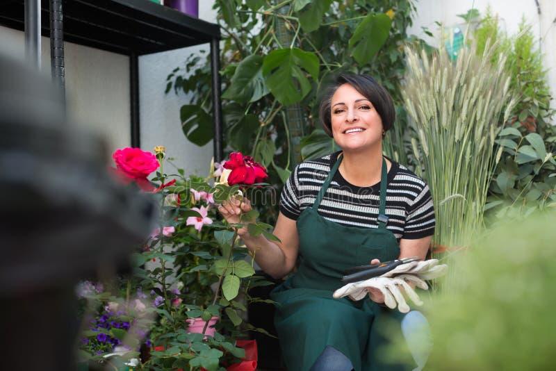 Флорист с инструментами в садовничая магазине стоковая фотография