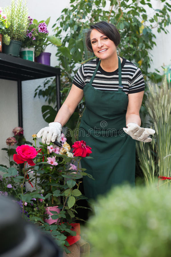 Флорист с инструментами в садовничая магазине стоковое изображение rf
