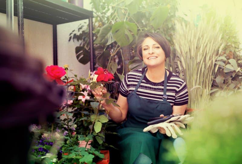 Флорист с инструментами в садовничая магазине стоковые изображения