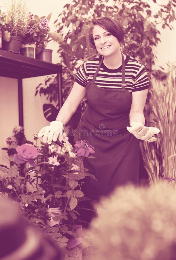 Флорист с инструментами в садовничая магазине стоковое фото