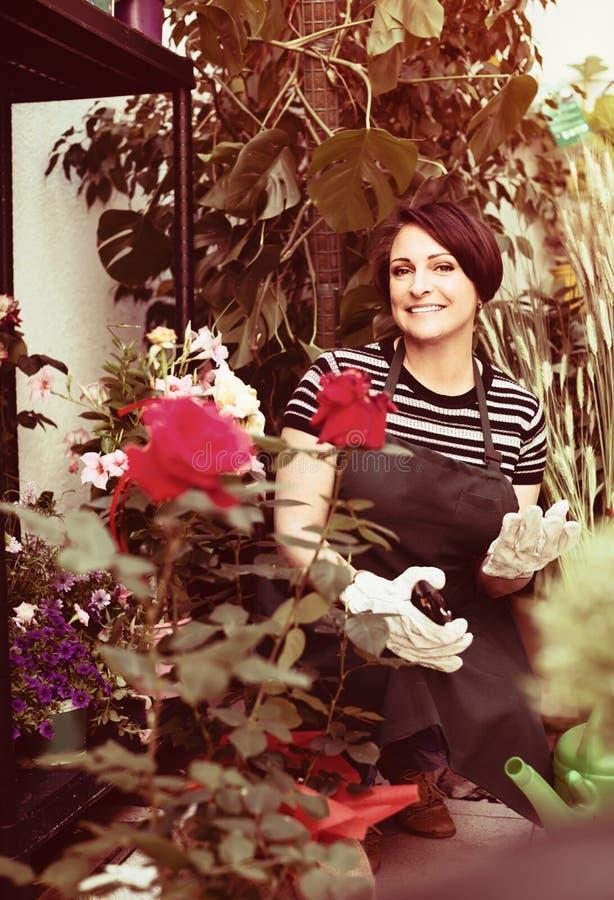 Флорист с инструментами в садовничая магазине стоковые изображения rf