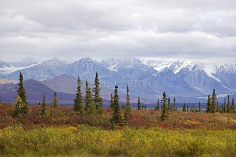 хайвей denali осени Аляски стоковая фотография