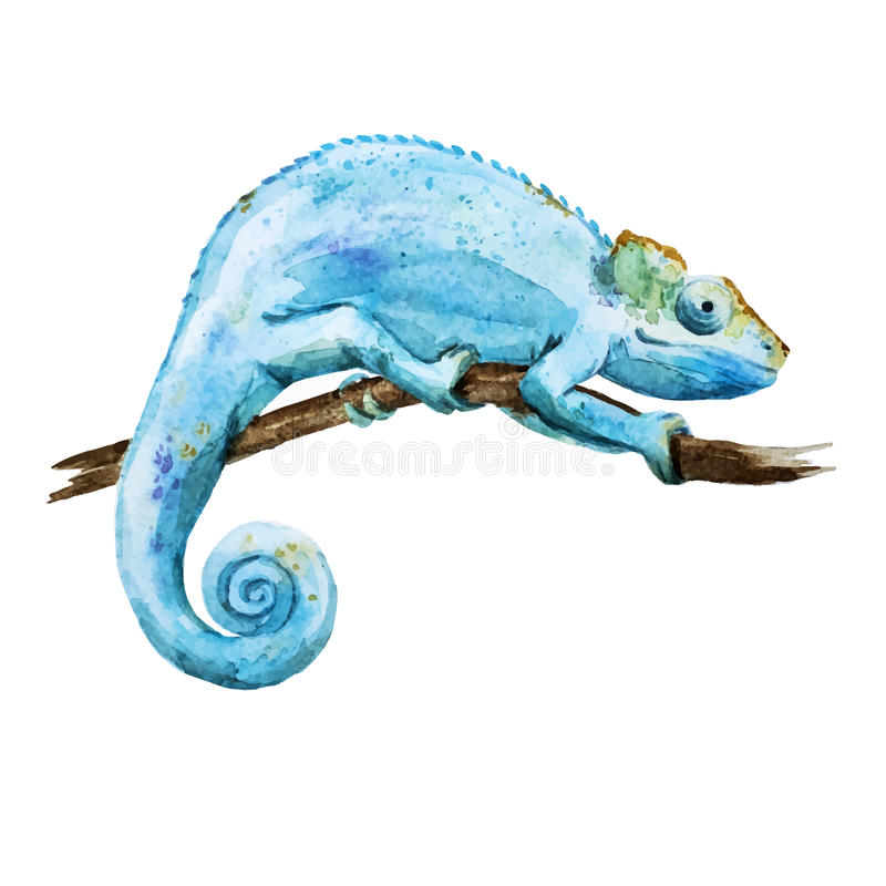 Хамелеон иллюстрация вектора