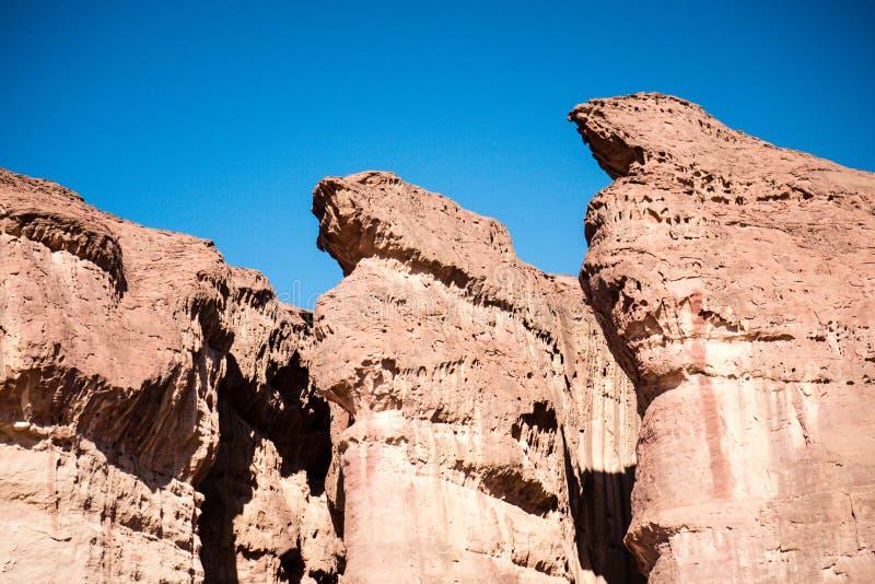 Характеристика штендеров Solomons геологохимическая от парка Израиля Timna стоковое фото