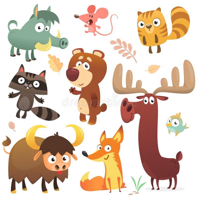 Характеры животного леса шаржа Вектор собраний животных одичалого шаржа милый Большой комплект вектора животных леса шаржа плоско иллюстрация вектора
