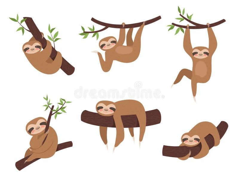 Характеры лени Милое сонное животное на талисмане мультфильма вектора ребенк дерева ветви взбираясь иллюстрация вектора