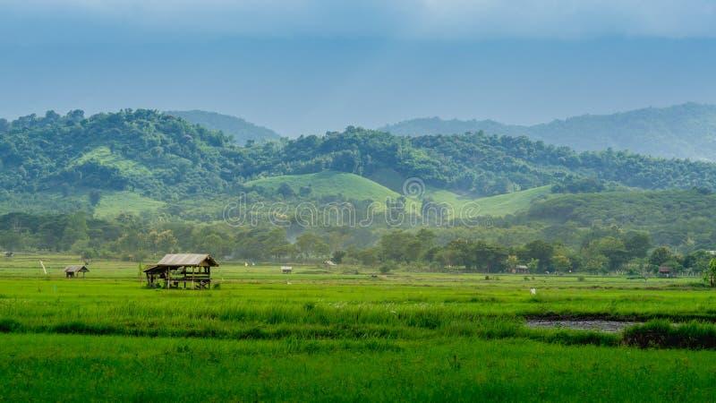 Хата в обрабатываемой земле людей в сельской местности стоковое фото rf