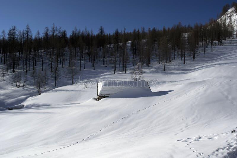 Download Хата стоковое изображение. изображение насчитывающей лыжа - 40582715
