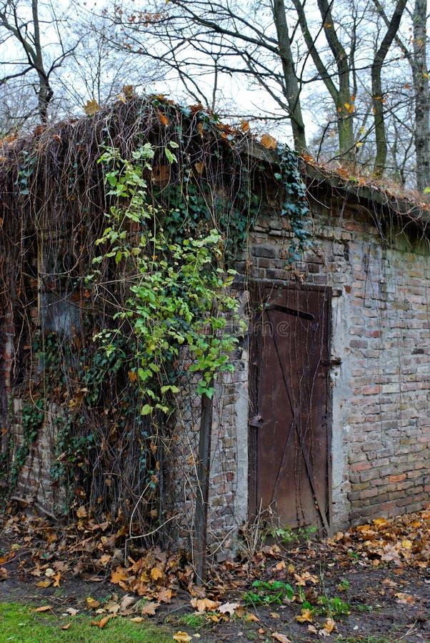 хата berlin старая tiergarten стоковое фото rf