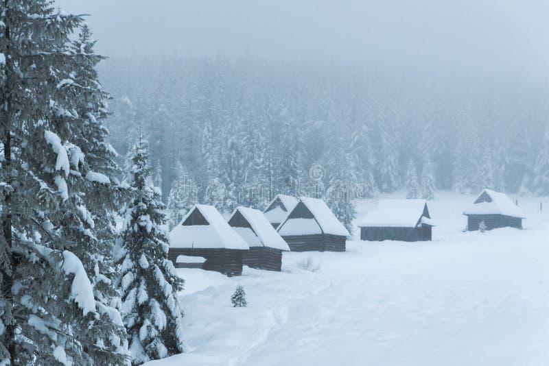 Хаты горы покрытые с снегом в туманном пейзаже зимы стоковое изображение rf