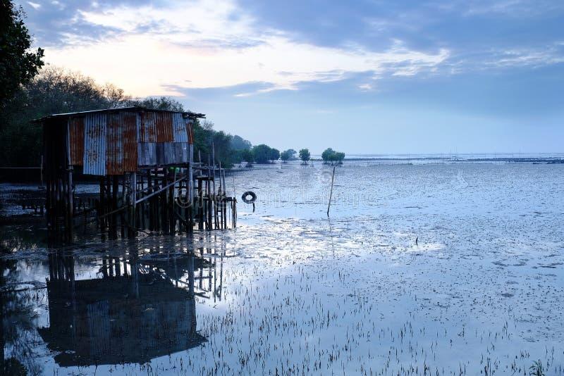 Хаты построенные в мангрове стоковые изображения